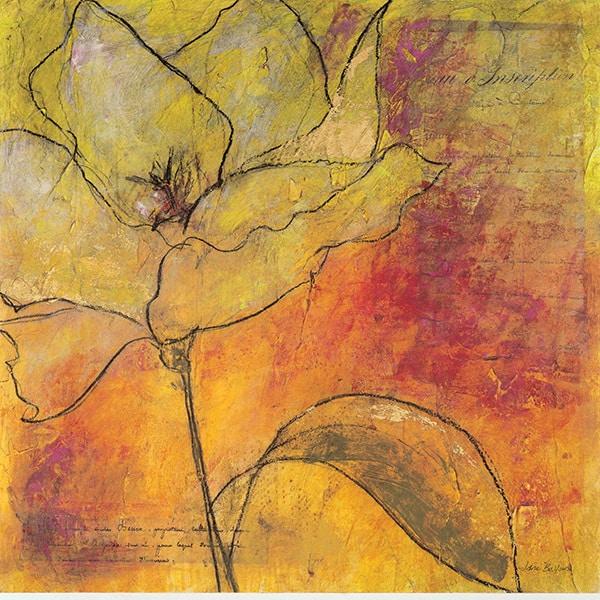 Scripted Bloom 1