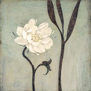 Ivory Bloom